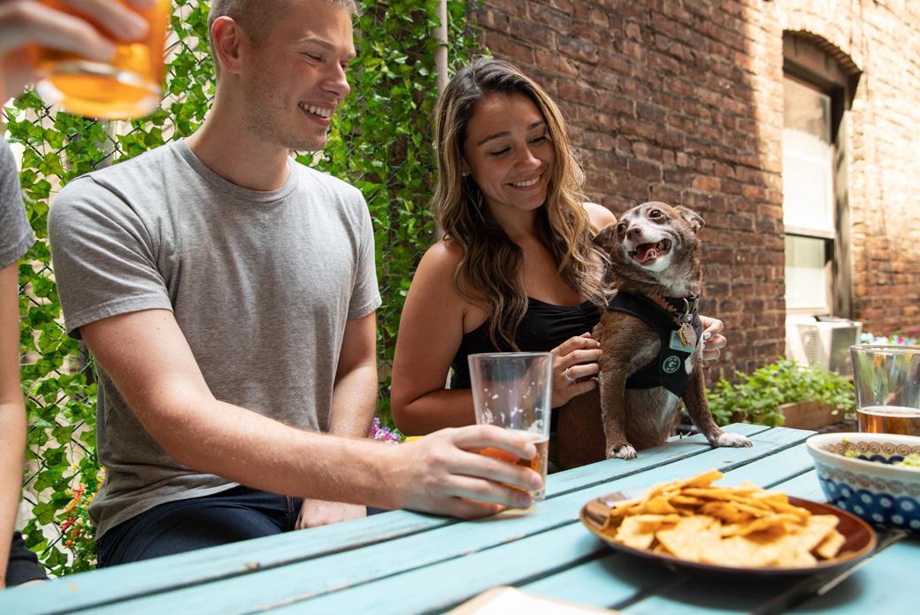 Celebratory Food, Drink and Other Festive Hazards