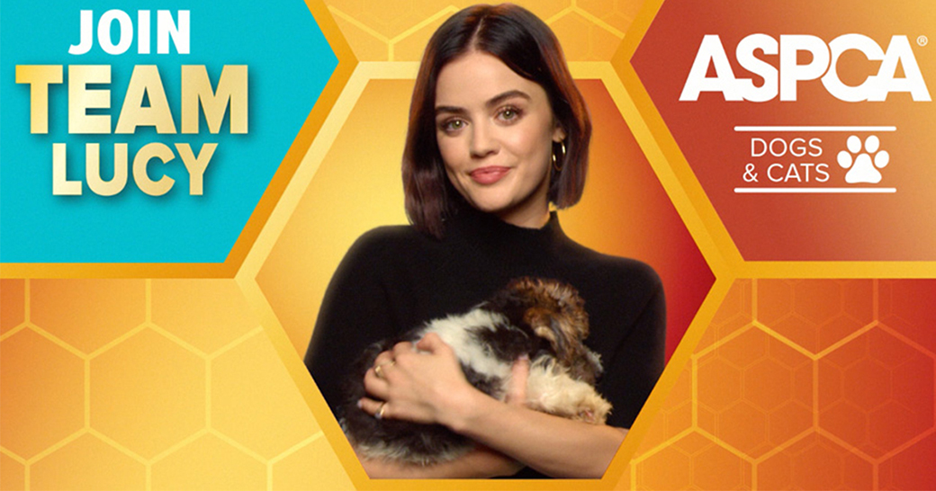 join team lucy