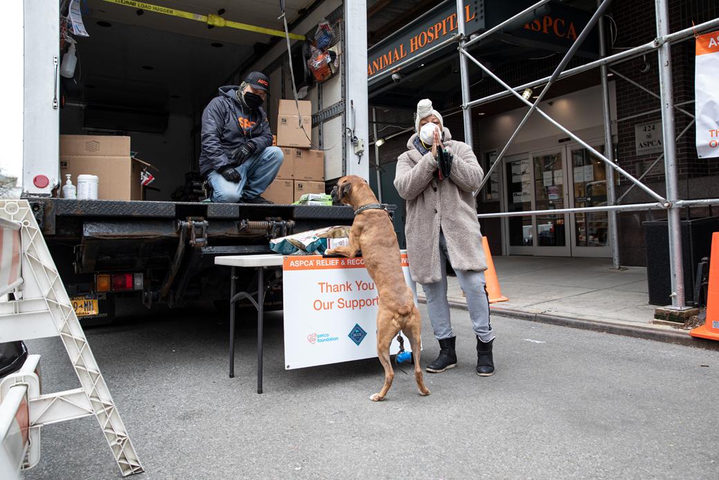 Pet food distribution truck