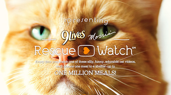 9Lives Morris' Rescue Watch