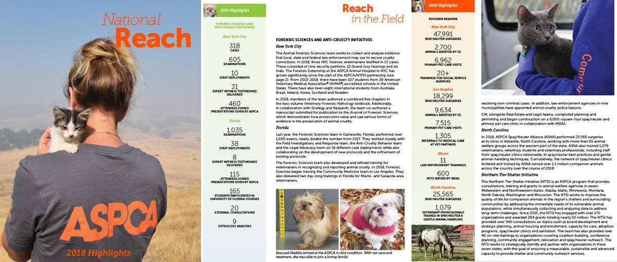 Annual Report | ASPCA