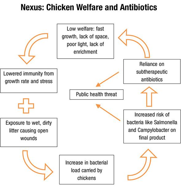 Welfare Chart