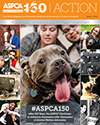 ASPCA Action Issue #1, 2016