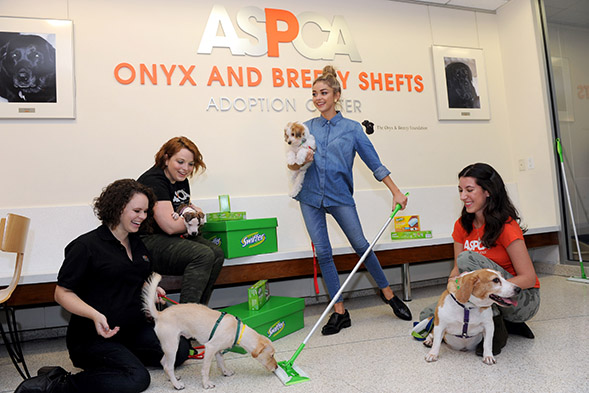 This week Modern Family's Sarah Hyland and Swiffer launched a year-long campaign to support the ASPCA and help animals in need. Hyland toured the ASPCA Adoption Center and hosted a pet appreciation party in Manhattan