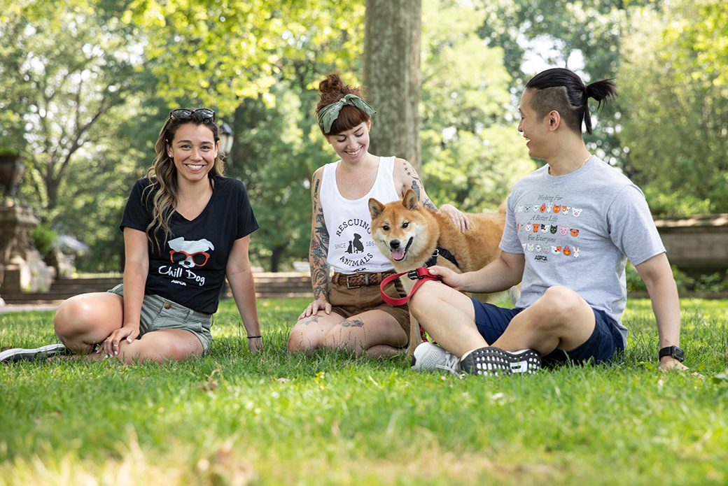 three people in a park with a shiba inu