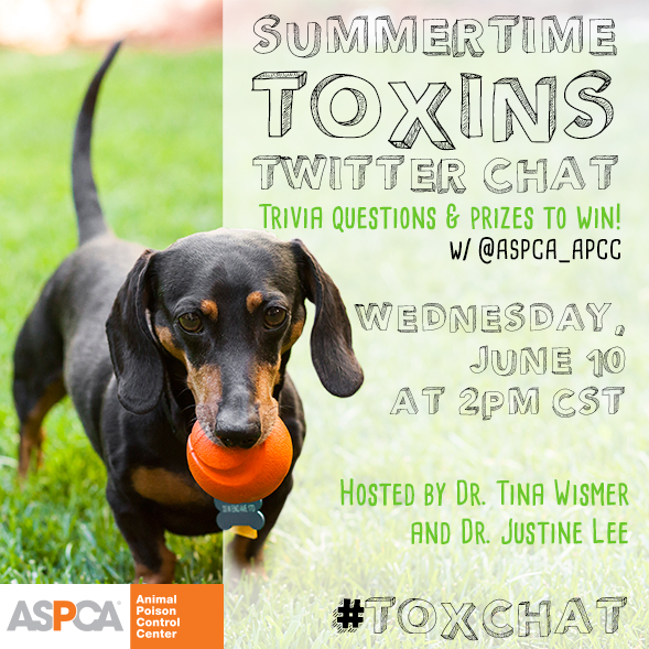 Summertime Pet Toxins Twitter Chat