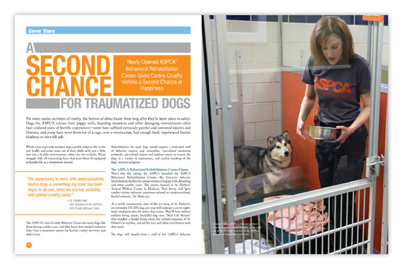 Read more about the ASPCA's Behavioral Rehabilitation Center in ASPCA Action!