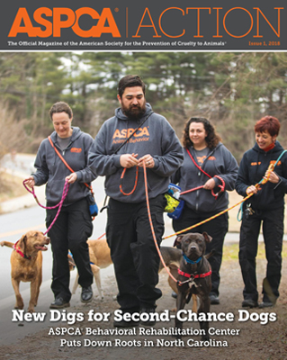 ASPCA Action Issue #1, 2018
