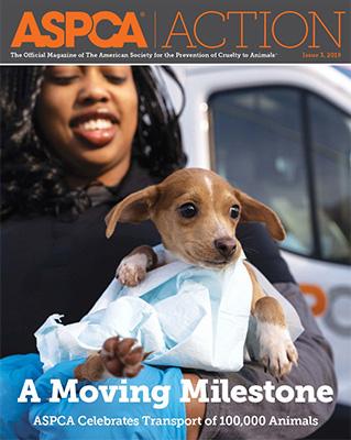 ASPCA Action Issue #3 2019