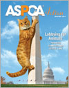 ASPCA Action Winter 2014