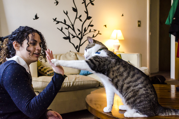 cat high-fives young woman