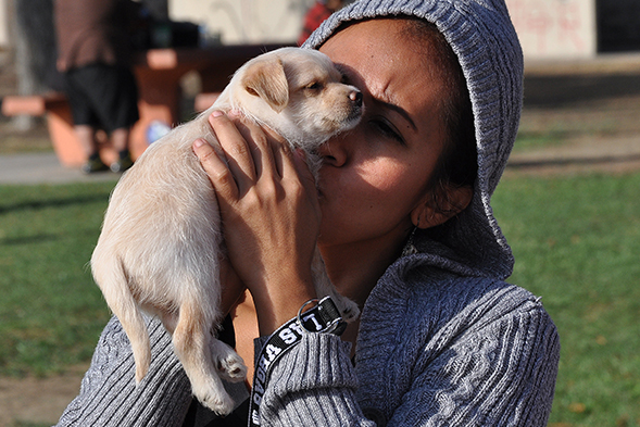 Young woman holding puppy at clinic in LA