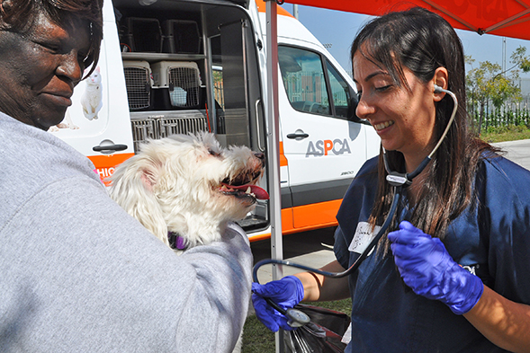 ASPCA Hosts First Free Clinic in South L.A.