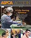ASPCA Action Issue #2, 2016
