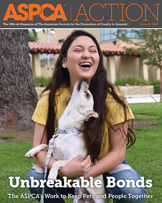 ASPCA Action Issue #2, 2019