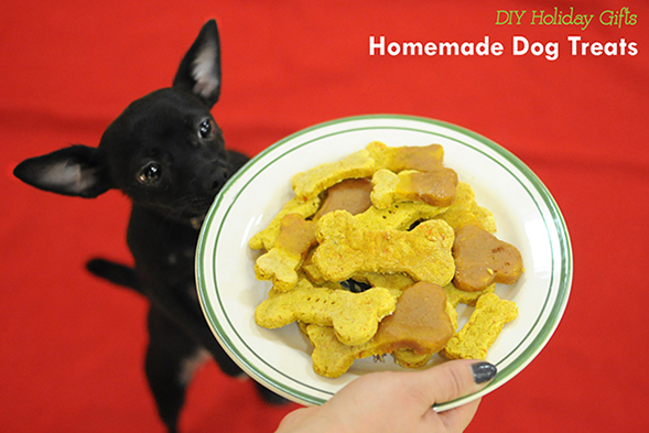 ASPCA Parents Holiday DIY Series: Homemade Pumpkin Pie Treats for Cats and Dogs