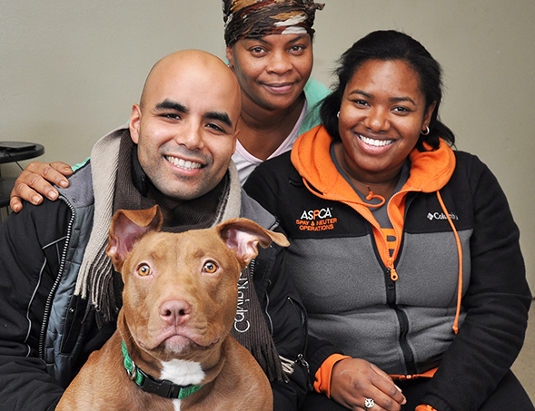 ASPCA Spay/Neuter Advocates Go Door-to-Door on Two Coasts to Protect Community Pets