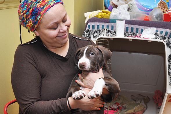 ASPCA Spay/Neuter Advocates Go Door-to-Door on Two Coasts to Protect Community Pets