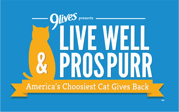 The ASPCA Teams Up With 9Lives to Feed Cats in Need Nationwide