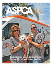 ASPCA Action Fall 2014