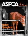 ASPCA Action Spring/Summer 2015