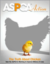 ASPCA Action Spring/Summer 2014