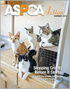 ASPCA Action Summer 2013