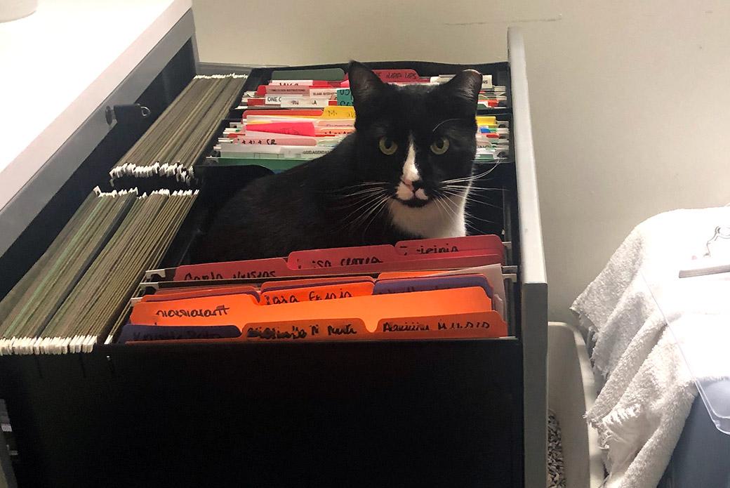 Aubrey sitting in file cabinet