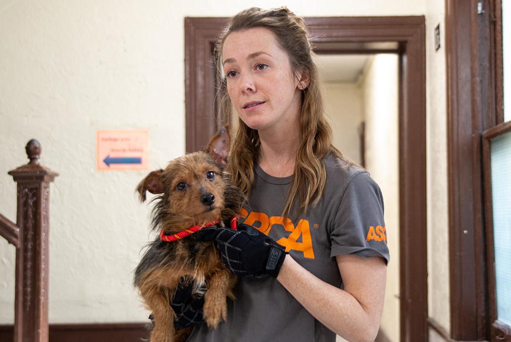 ASPCA responder holding a rescued dog
