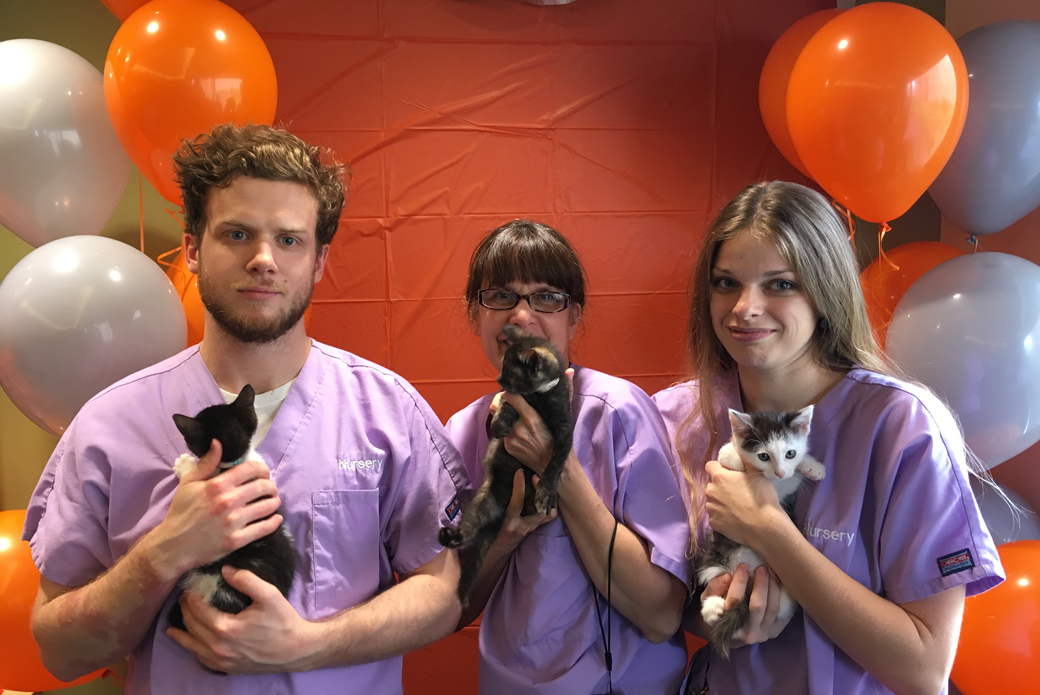 Nursery caregivers Dylan Bennett, Stacy Horn and Yeva Usatova pose with Frodo and his best friends, York and Gorgeous.