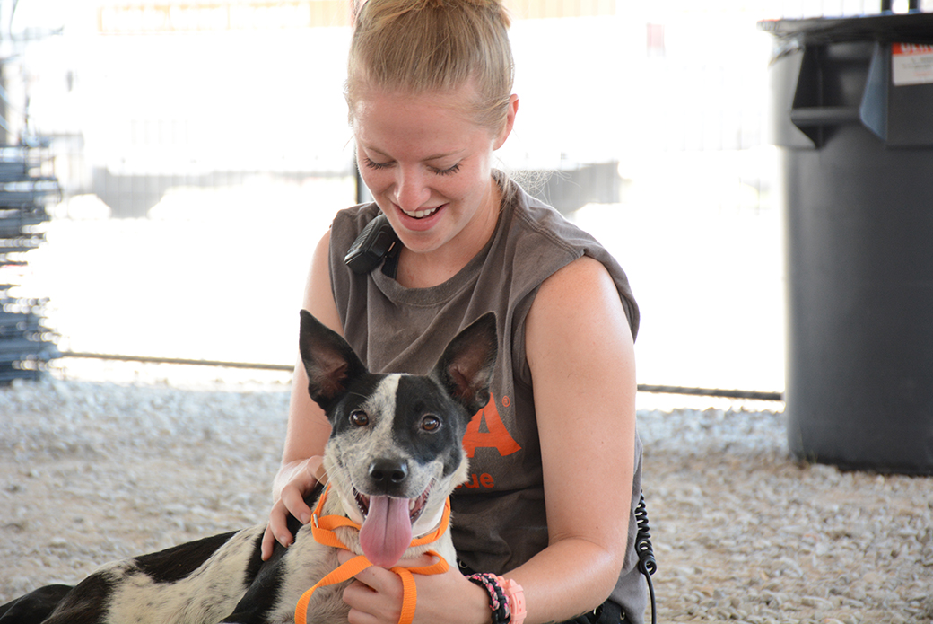 an aspca volunteer with a rescued dog