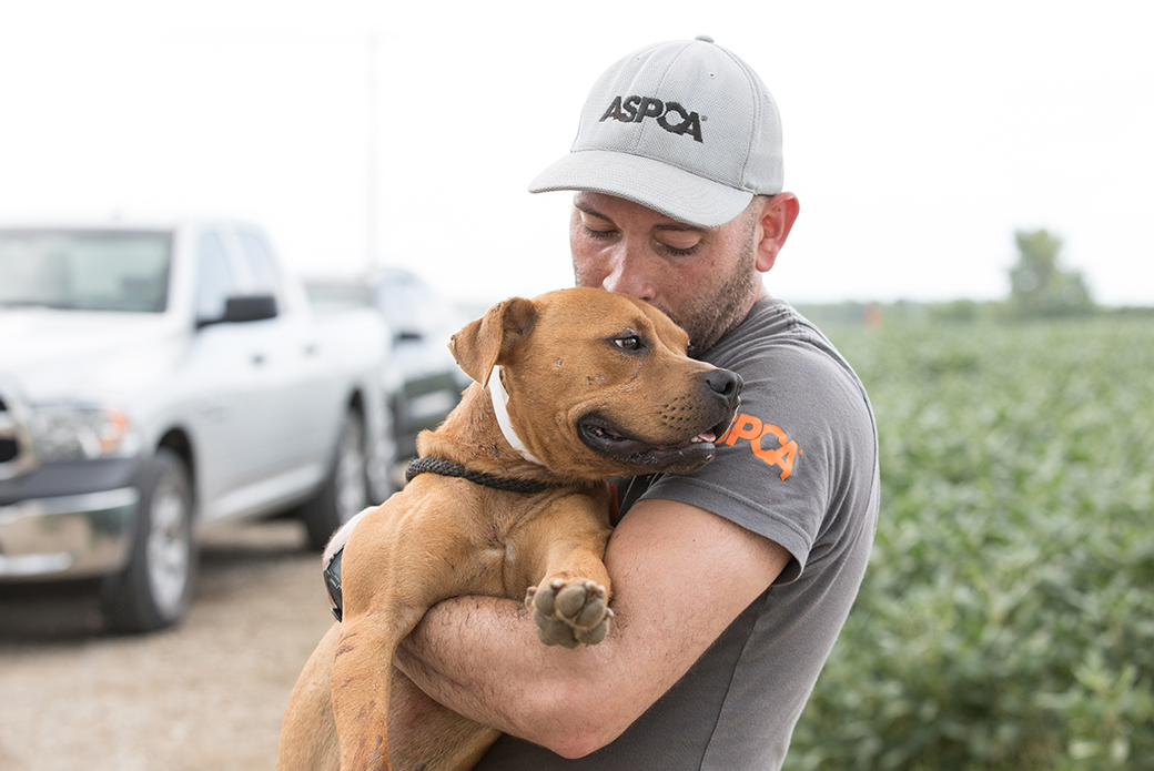 a rescued dog with an aspca volunteer