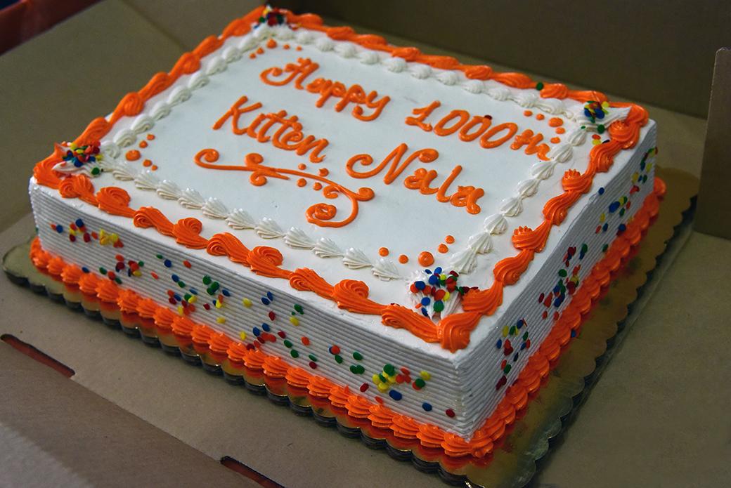 a cake celebrating Nala