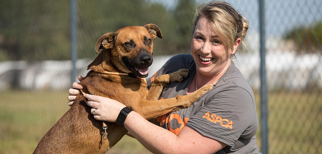 rescued dog with aspca responder