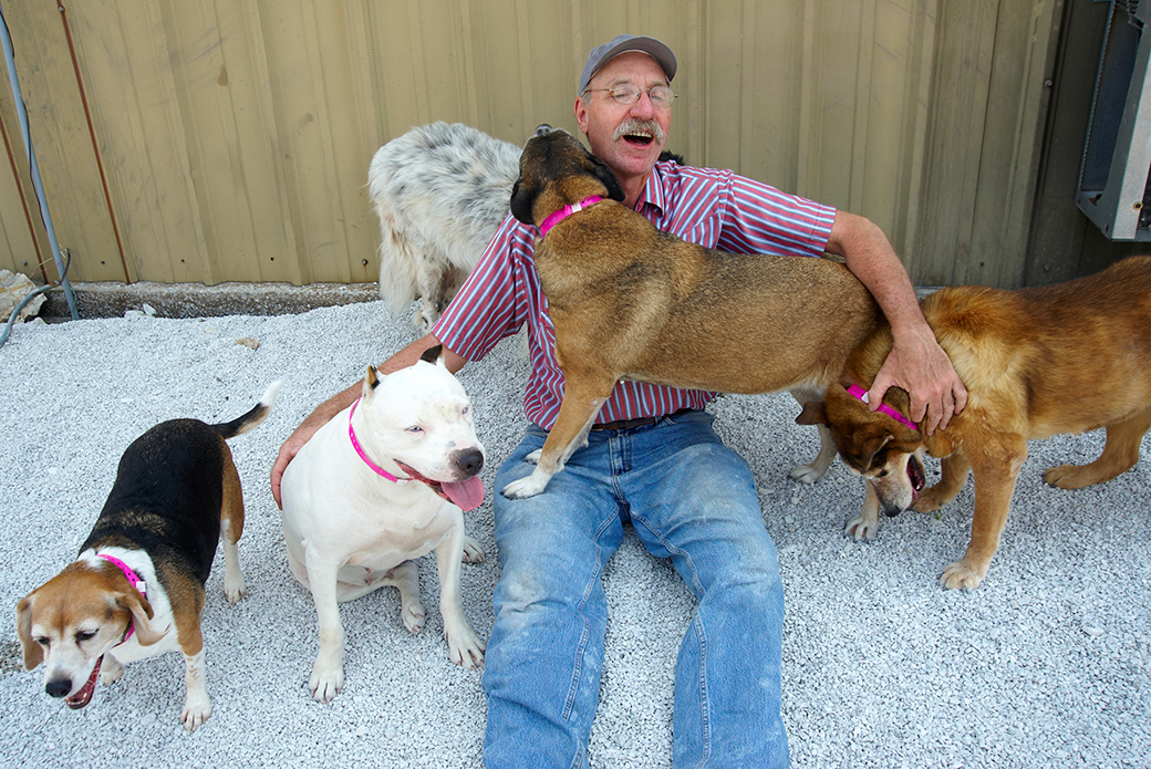 Murray Fields visited his dogs daily while they were boarded at the ASPCA's emergency shelter