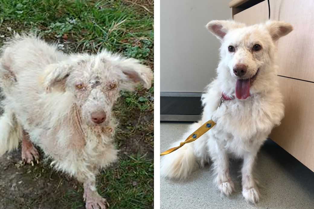 Cloud when she was being rescued and when she's recovered