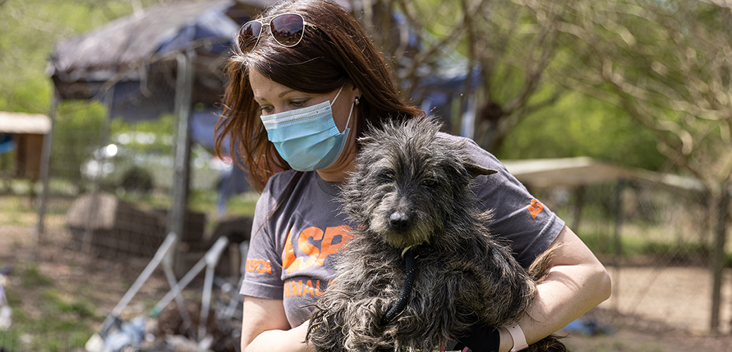 ASPCA Responder carrying a rescued dog