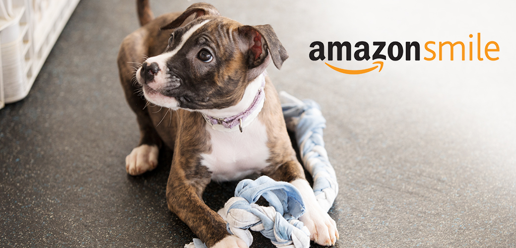 a puppy with a toy and the amazon smile logo