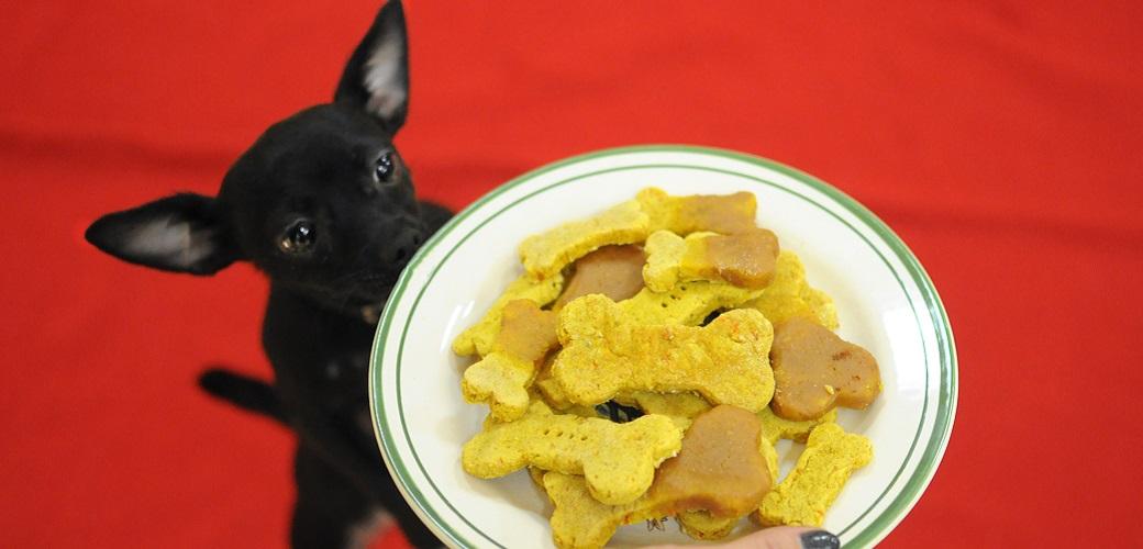 APCC: Snacks