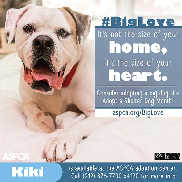 #BigLove Kiki