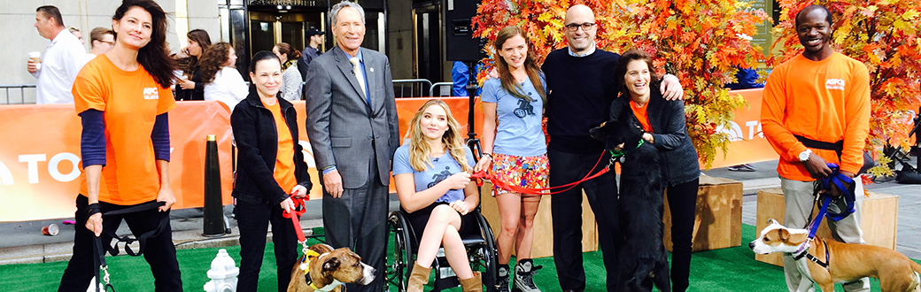 ASPCA on the Today Show