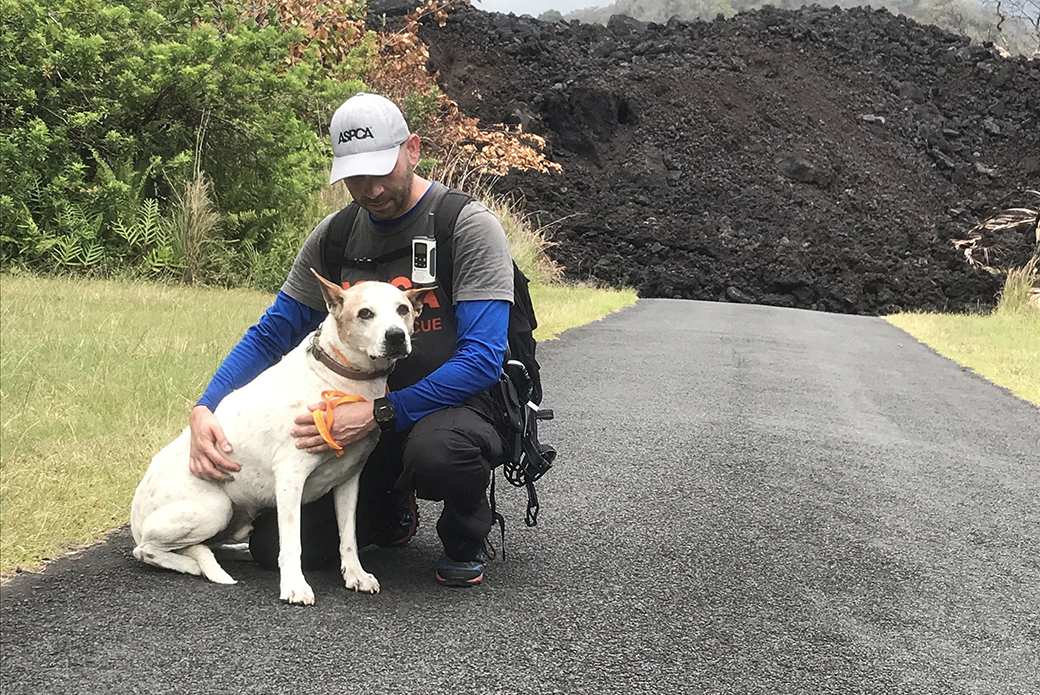 an aspca responder with a dog