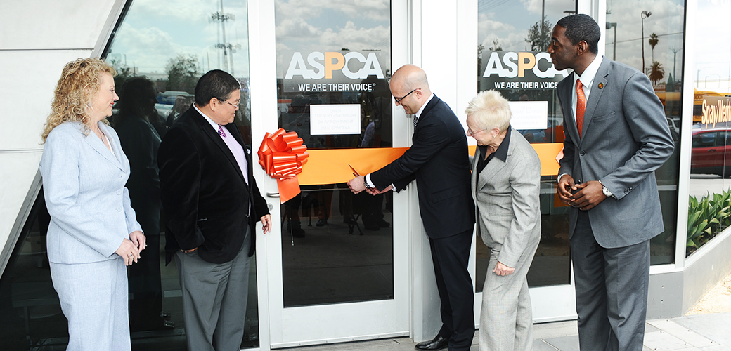 The ASPCA Commits $25 Million to Help Los Angeles' Animals