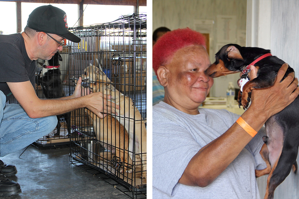 Left, Randy Faircloth identifying his dogs. Right, Janice Powell with Shawn.