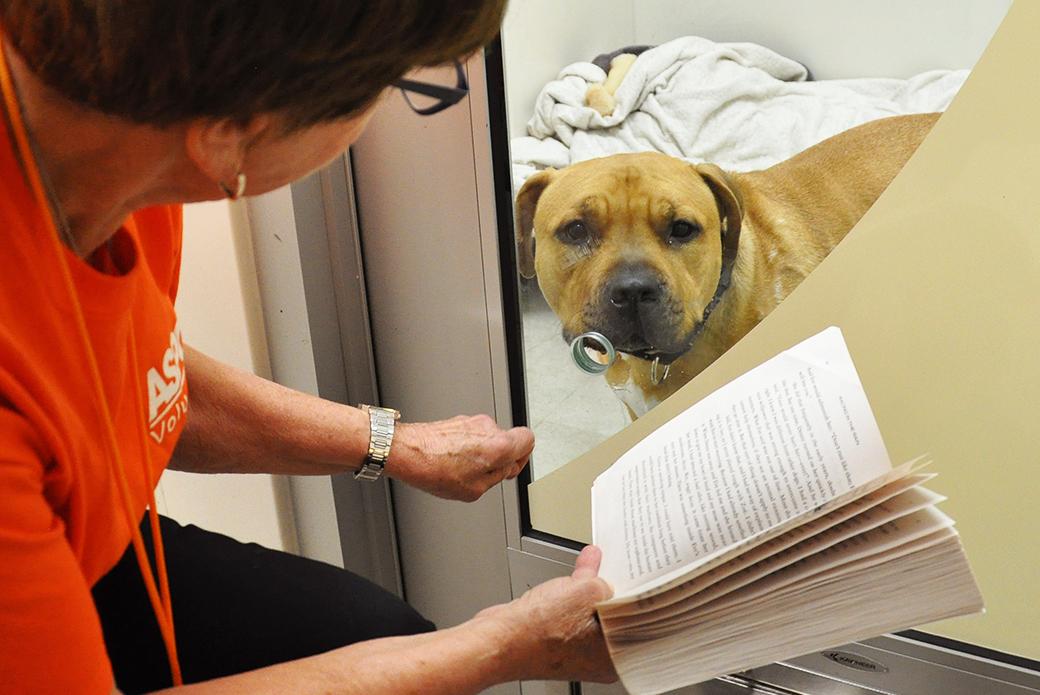 Margarita looking at book
