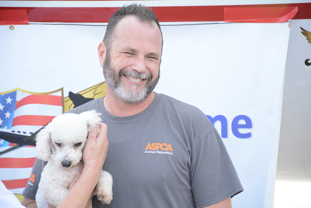 Animals in Flight: ASPCA Transports 145 Los Angeles Pets to Find Loving Homes