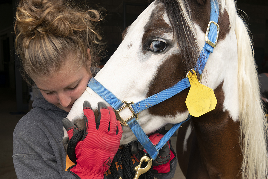 an aspca responder with a horse