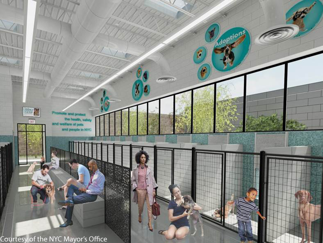 rendering of the inside of proposed bronx shelter