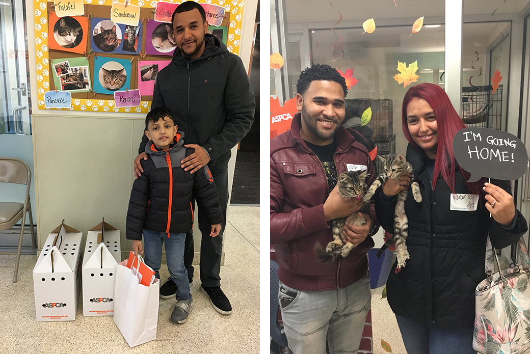 Right: Zaki and Yousef, Left: Bat and Bones with their new pet parents