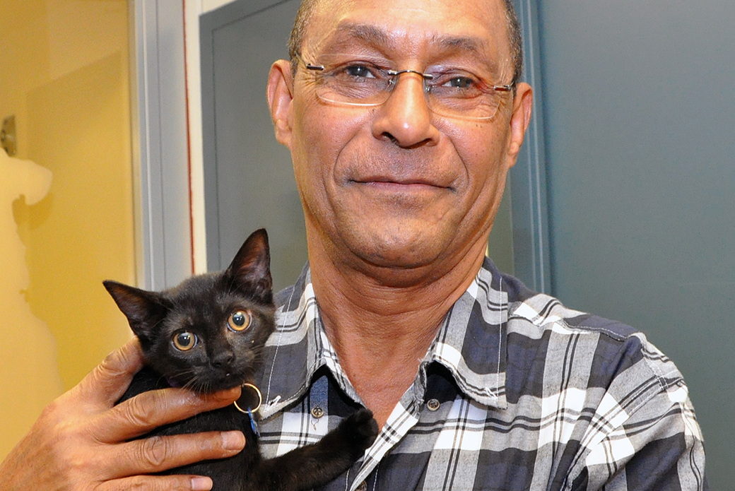 Great News! 65 ASPCA Felines Found Loving Homes on Cat Friday